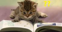 読書はすればいいってもんじゃない!?イチローが本を読まない理由